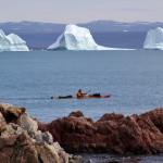 Kayaking Scoresbysund